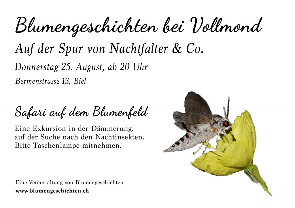 vollmondabend_flyer